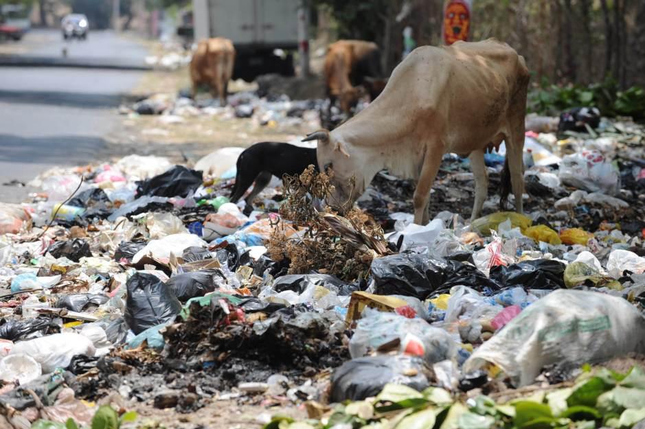 San Salvador, lunes 13 de abril de 2009. La basura en el Municipio de Tonacatepeque no a sido recolectada por la Alcaldia. Foto EDH. Lissette Monterrosa